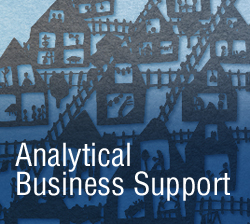Analytical business support